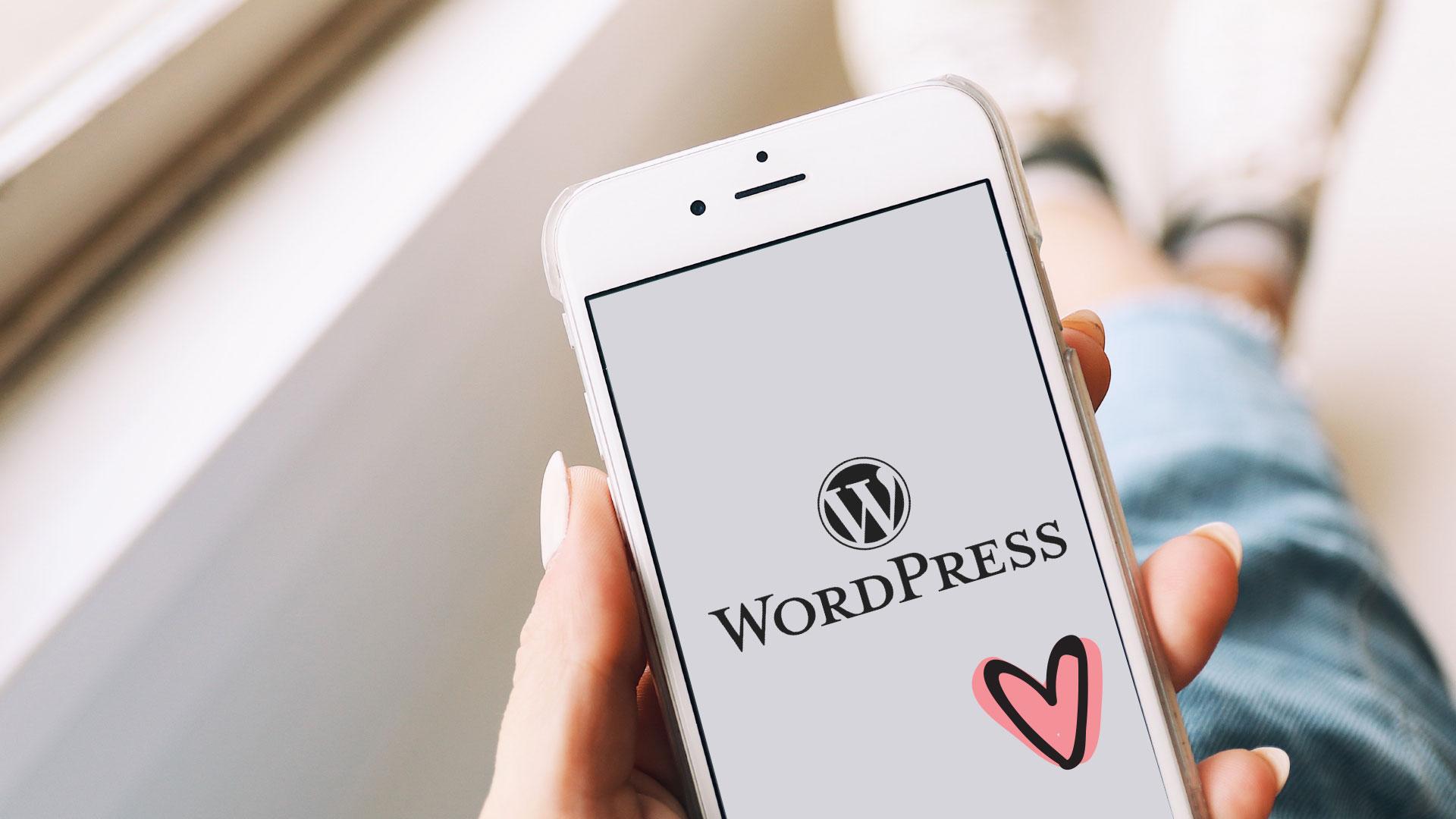 We are WordPress Experts!