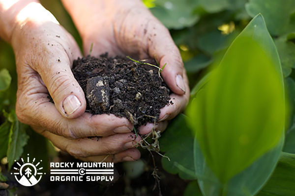 Rocky Mountain Organic Supply Colorado Springs Ecommerce Web Design Project | by Original Ginger