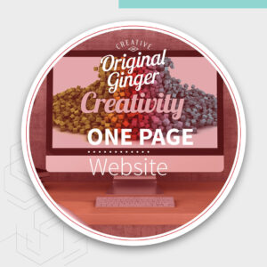 To create a professional online business we can build you a professional WordPress website.