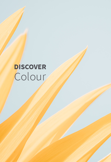 Brand Strategy Gallery Discover Colour