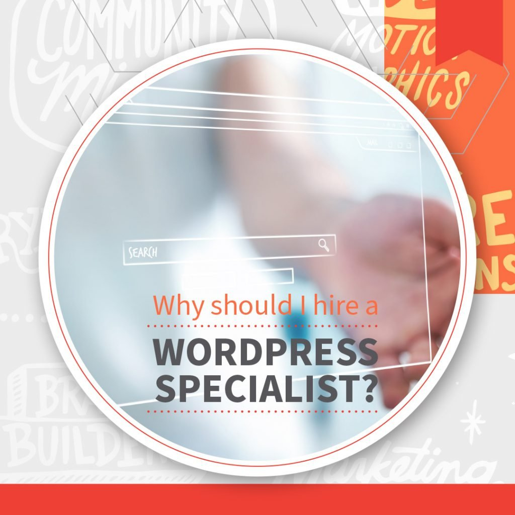 Why You Should Hire a WordPress Specialist